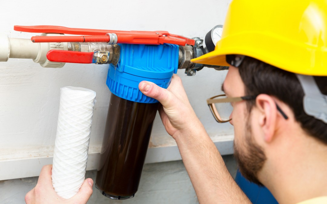 Why Is a Home Filtration System Better Than the Cartridge in My Fridge?