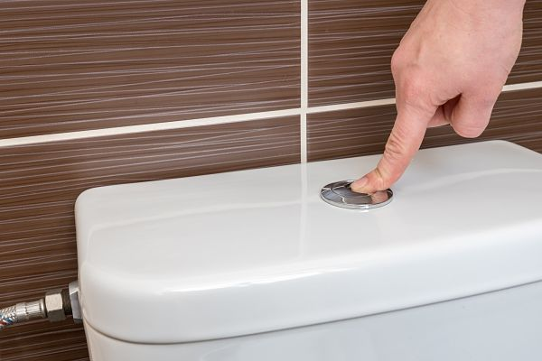 Toilet-Busting Myths: Common Items You'll Regret Flushing